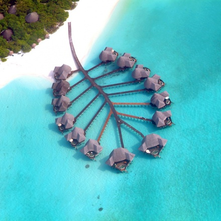 Coco Palm Resort, Maldives4