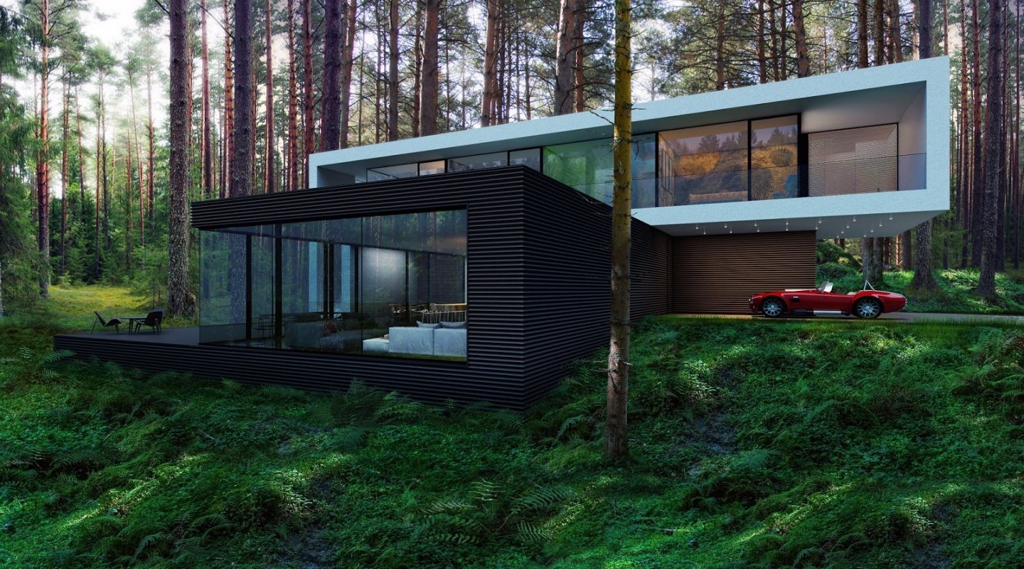 2 house in the woods by alexander zhidkov