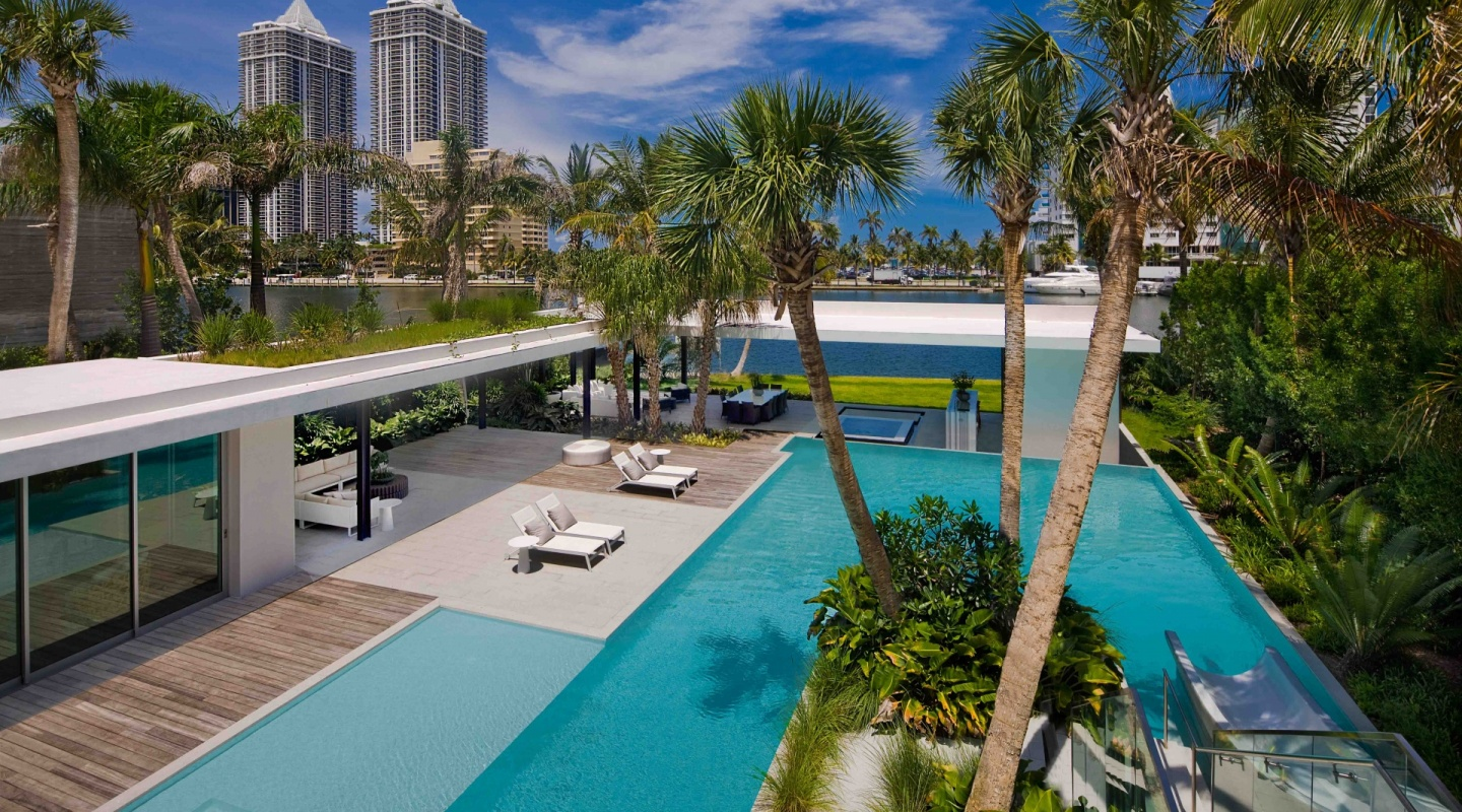 pine tree miami by saota7